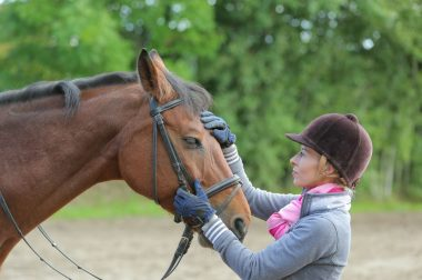 Der Pferdeführerschein – was sich bei den neuen Reitabzeichen ändert